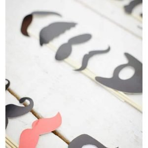 mustache fun photobooth props
